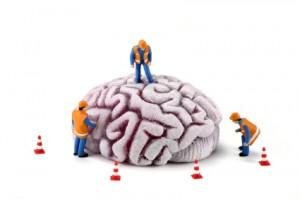 Como funciona a mente humana?